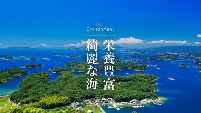 こだわり|<span>九十九島はミネラルなど</span> <span>栄養豊富で綺麗な海に</span> <span>囲まれています。</span>   の画像