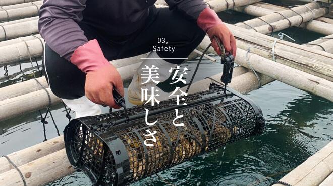 こだわり|<span>安全と美味しさの両立を。</span> <span>当社の牡蠣は全て殺菌処理をし、</span> <span>毎週実施しています。</span>の画像
